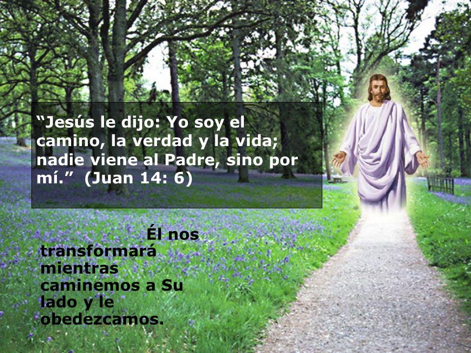 Jesús le dijo: Yo soy el camino, la verdad y la vida; nadie viene al Padre, sino por mí. (Juan 14: 6) Él nos transformará mientras caminemos a Su lado