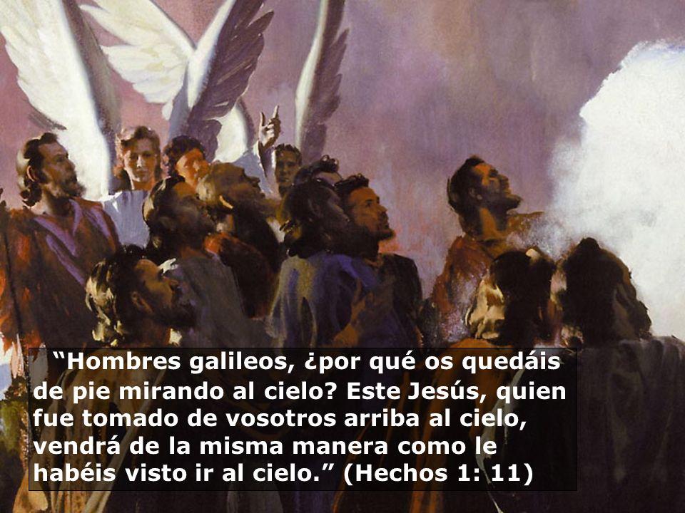 Hombres galileos, ¿por qué os quedáis de pie mirando al cielo? Este Jesús, quien fue tomado de vosotros arriba al cielo, vendrá de la misma manera com