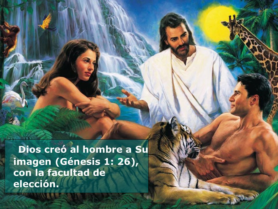 Dios creó al hombre a Su imagen (Génesis 1: 26), con la facultad de elección.
