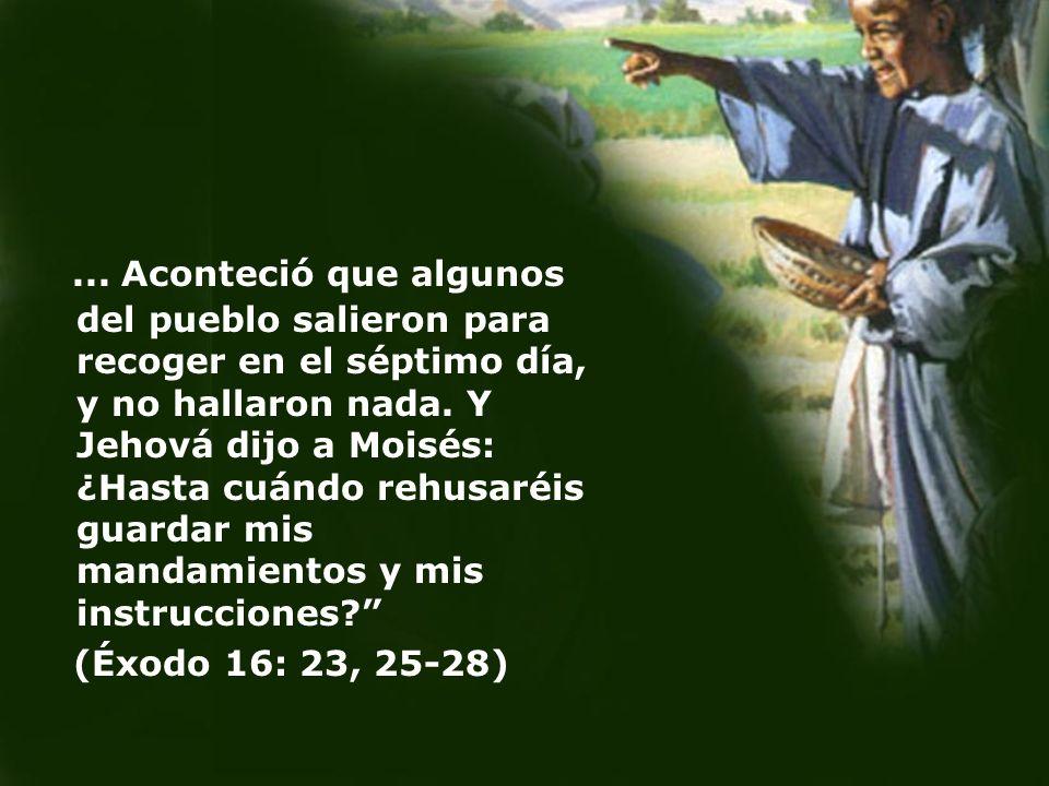 ... Aconteció que algunos del pueblo salieron para recoger en el séptimo día, y no hallaron nada. Y Jehová dijo a Moisés: ¿Hasta cuándo rehusaréis gua