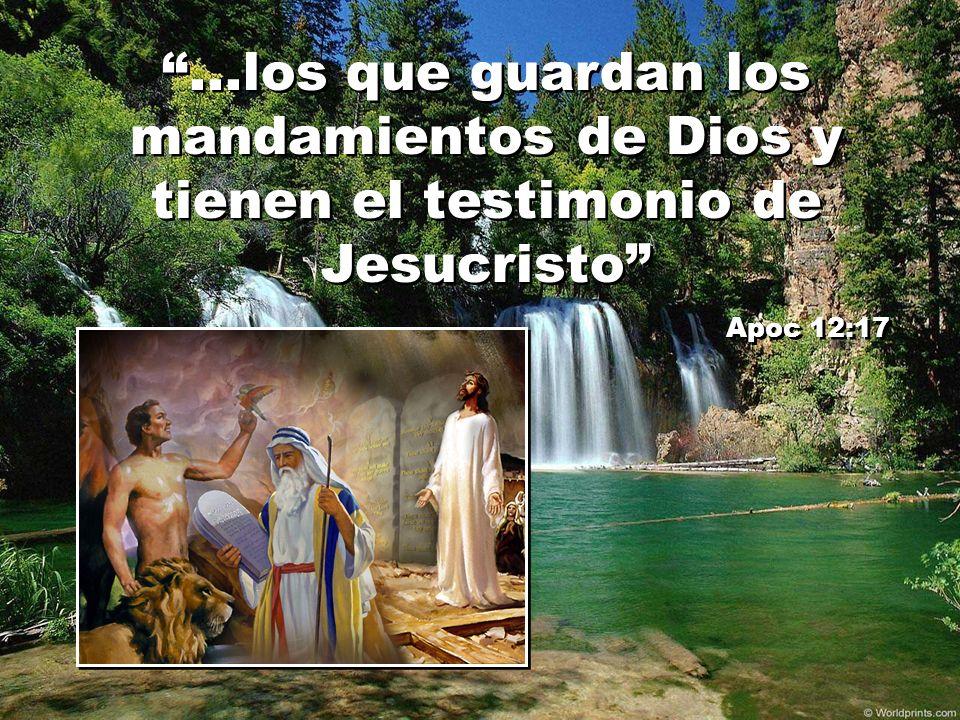 ...los que guardan los mandamientos de Dios y tienen el testimonio de Jesucristo Apoc 12:17...los que guardan los mandamientos de Dios y tienen el tes