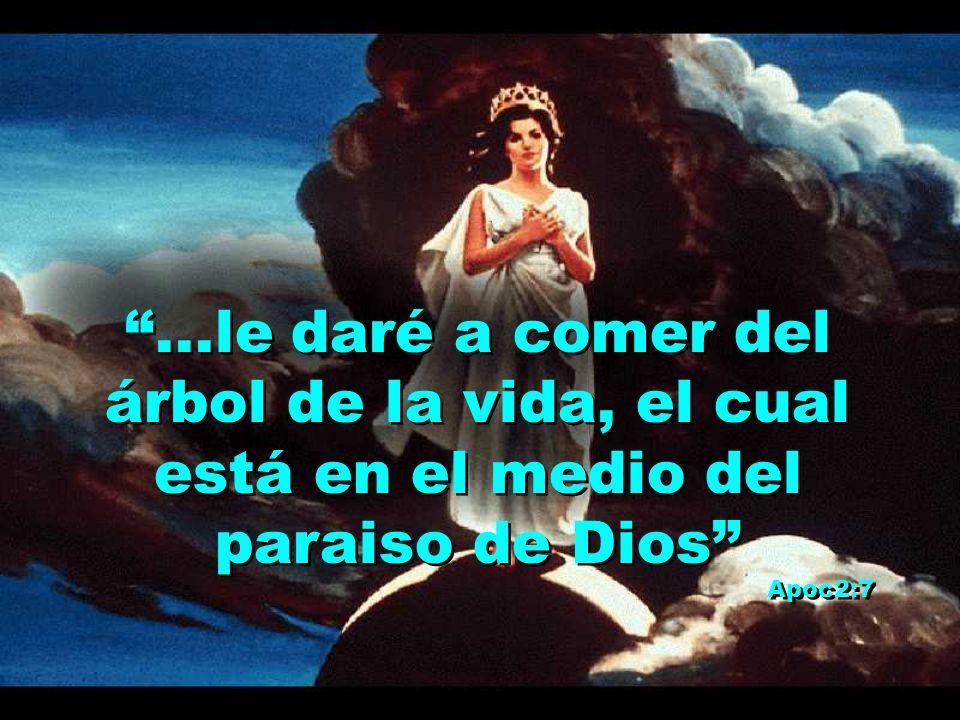 ...le daré a comer del árbol de la vida, el cual está en el medio del paraiso de Dios Apoc2:7...le daré a comer del árbol de la vida, el cual está en