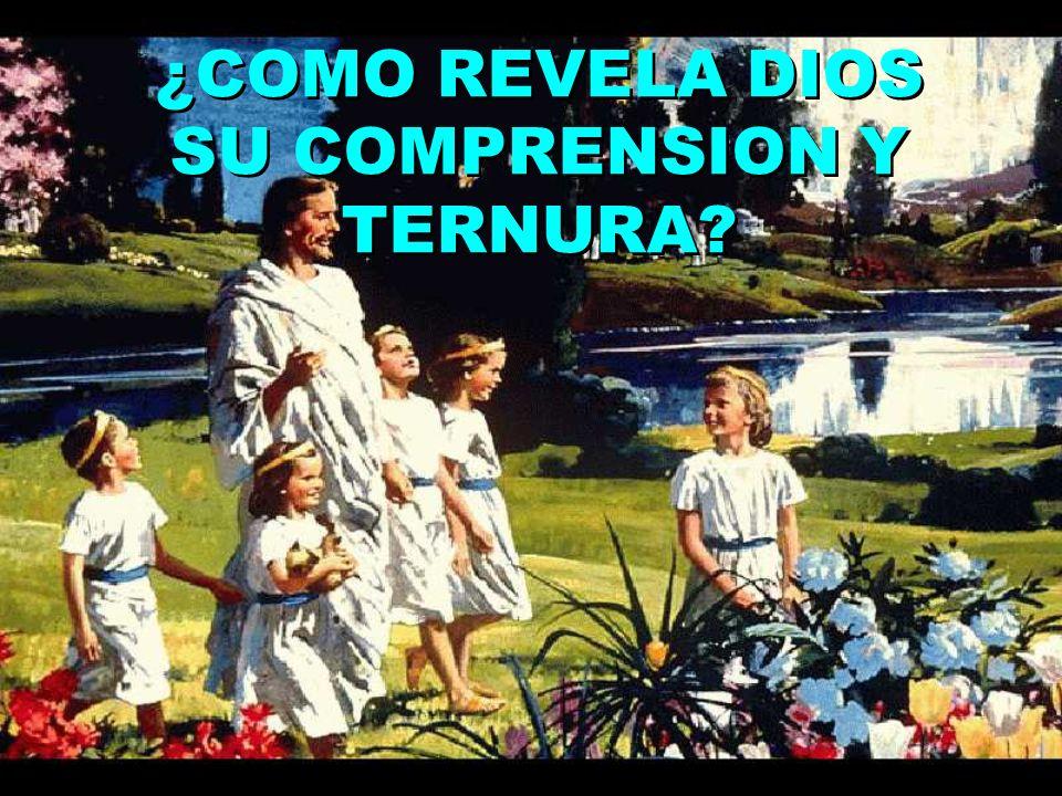 ¿COMO REVELA DIOS SU COMPRENSION Y TERNURA?