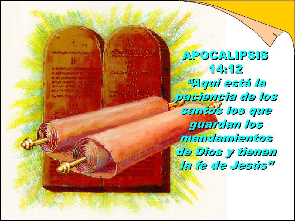 APOCALIPSIS 14:12 Aquí está la paciencia de los santos los que guardan los mandamientos de Dios y tienen la fe de Jesús APOCALIPSIS 14:12 Aquí está la