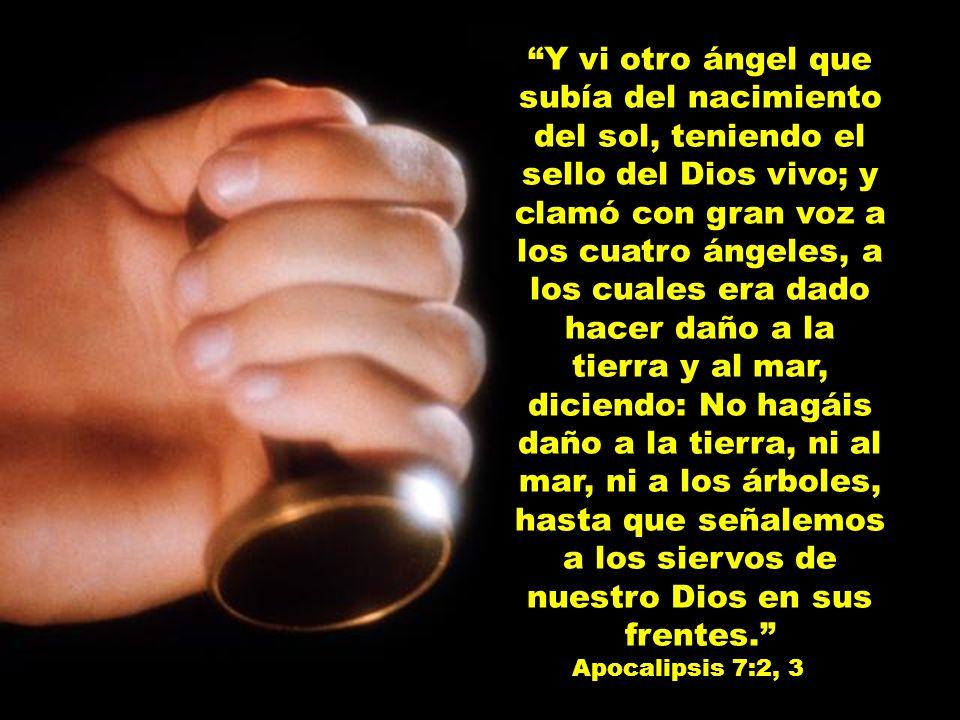 Y vi otro ángel que subía del nacimiento del sol, teniendo el sello del Dios vivo; y clamó con gran voz a los cuatro ángeles, a los cuales era dado ha