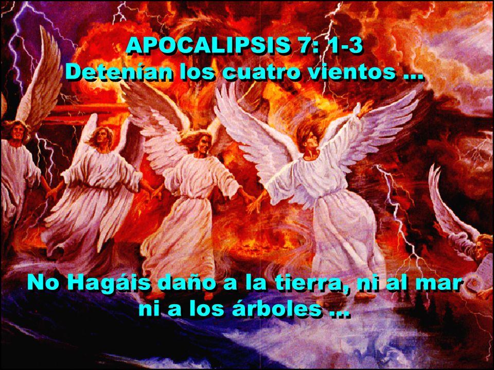 APOCALIPSIS 7: 1-3 Detenían los cuatro vientos... No Hagáis daño a la tierra, ni al mar ni a los árboles... APOCALIPSIS 7: 1-3 Detenían los cuatro vie