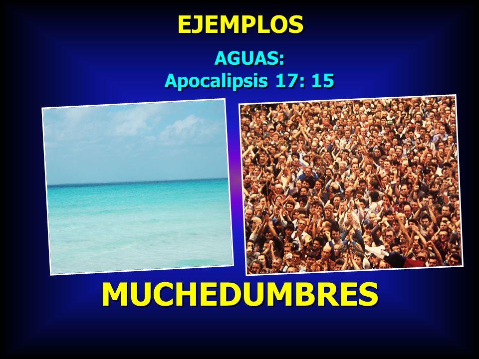 EJEMPLOS AGUAS: Apocalipsis 17: 15 AGUAS: Apocalipsis 17: 15 MUCHEDUMBRES
