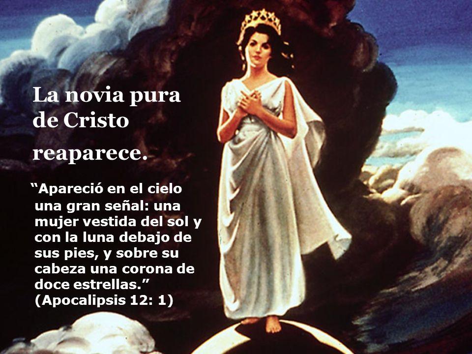 La novia pura de Cristo reaparece. Apareció en el cielo una gran señal: una mujer vestida del sol y con la luna debajo de sus pies, y sobre su cabeza