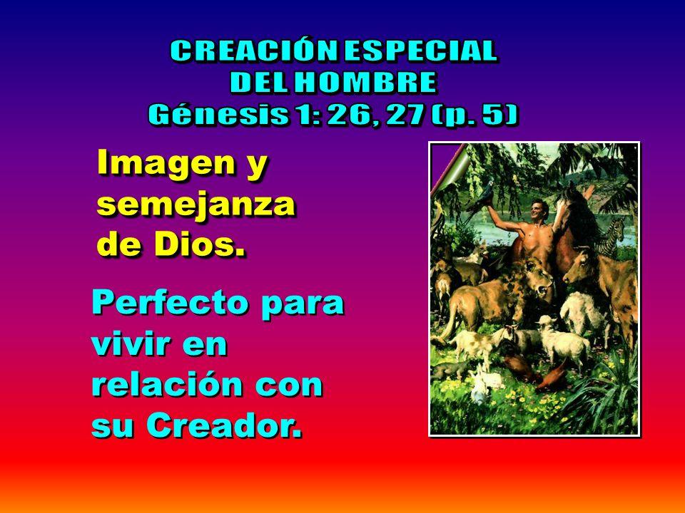 Dominad los peces del mar, las aves del cielo, y todas las bestias que se mueven sobre la tierra Génesis 1:28