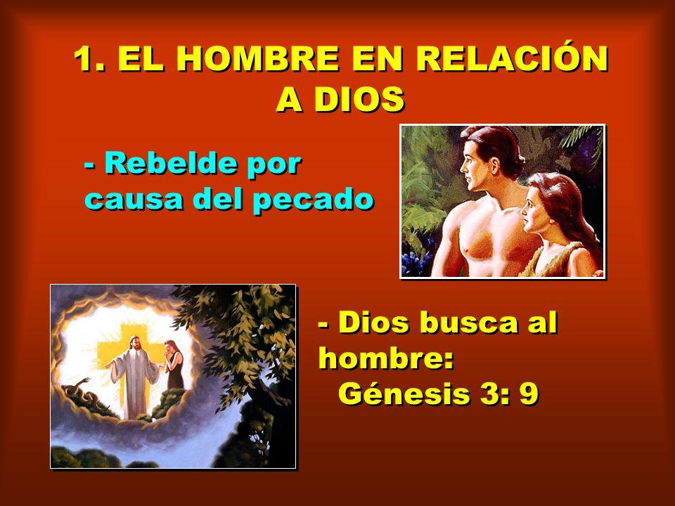 RESULTADOS INMEDIATOS DE LA CAÍDA DEL HOMBRE Génesis 3: 7 Conocimiento experimental del mal: fueron abiertos sus ojos. Desnudez: conocieron que estaba