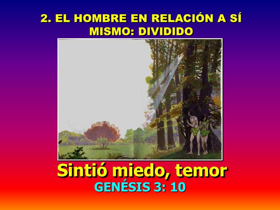 LA ALIENACIÓN PRODUCIDA POR EL PECADO LA ALIENACIÓN PRODUCIDA POR EL PECADO ISAÍAS 59: 1,2 ISAÍAS 59: 1,2... vuestras iniquidades han hecho división e