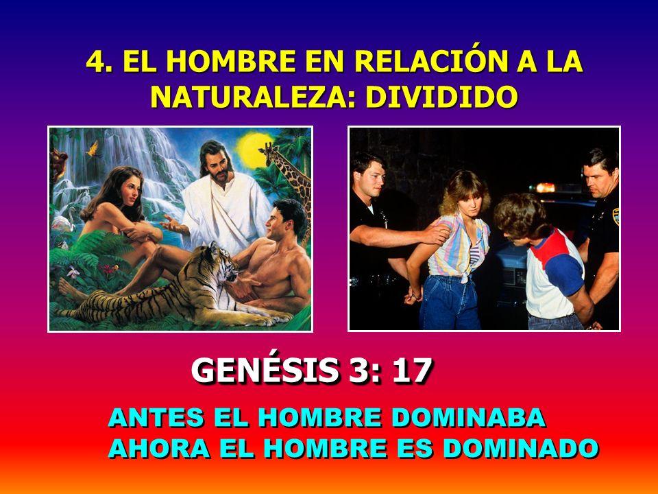 3. EL HOMBRE EN RELACIÓN A SU PRÓJIMO: DIVIDIDO 3. EL HOMBRE EN RELACIÓN A SU PRÓJIMO: DIVIDIDO GENÉSIS 3: 11-13 GENÉSIS 3: 11-13 M D H ANTES H D M DE