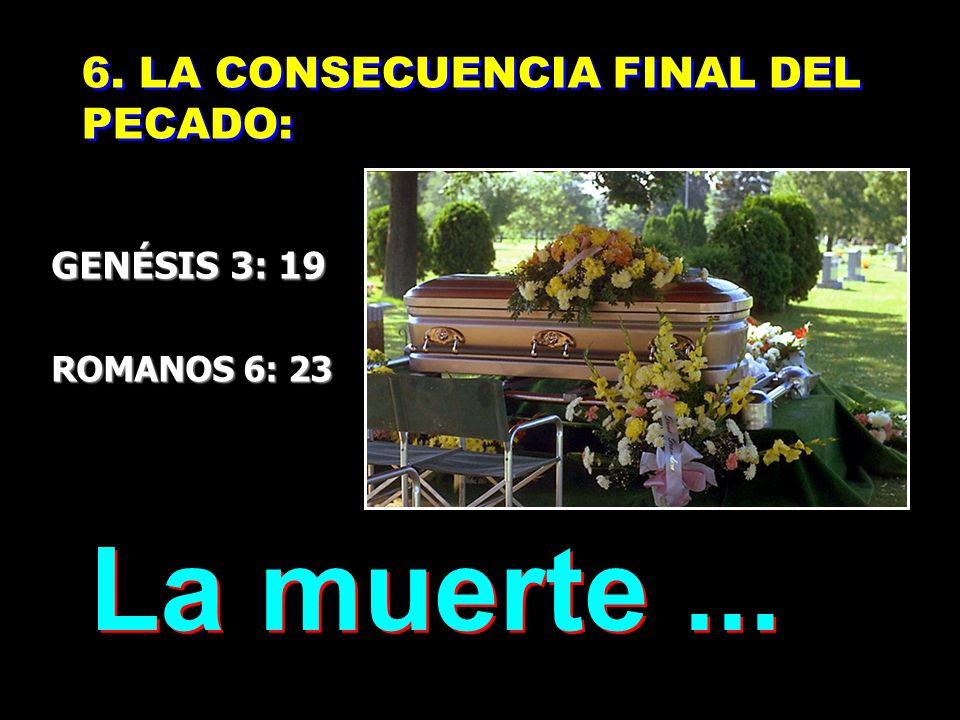 5. LA NATURALEZA CONSIGO MISMA: DIVIDIDA 5. LA NATURALEZA CONSIGO MISMA: DIVIDIDA GENÉSIS 3: 18 GENÉSIS 3: 18