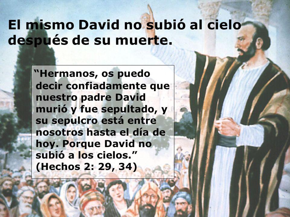 El mismo David no subió al cielo después de su muerte. Hermanos, os puedo decir confiadamente que nuestro padre David murió y fue sepultado, y su sepu
