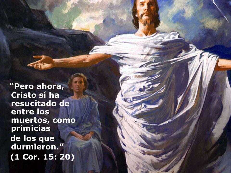 Pero ahora, Cristo sí ha resucitado de entre los muertos, como primicias de los que durmieron. (1 Cor. 15: 20)