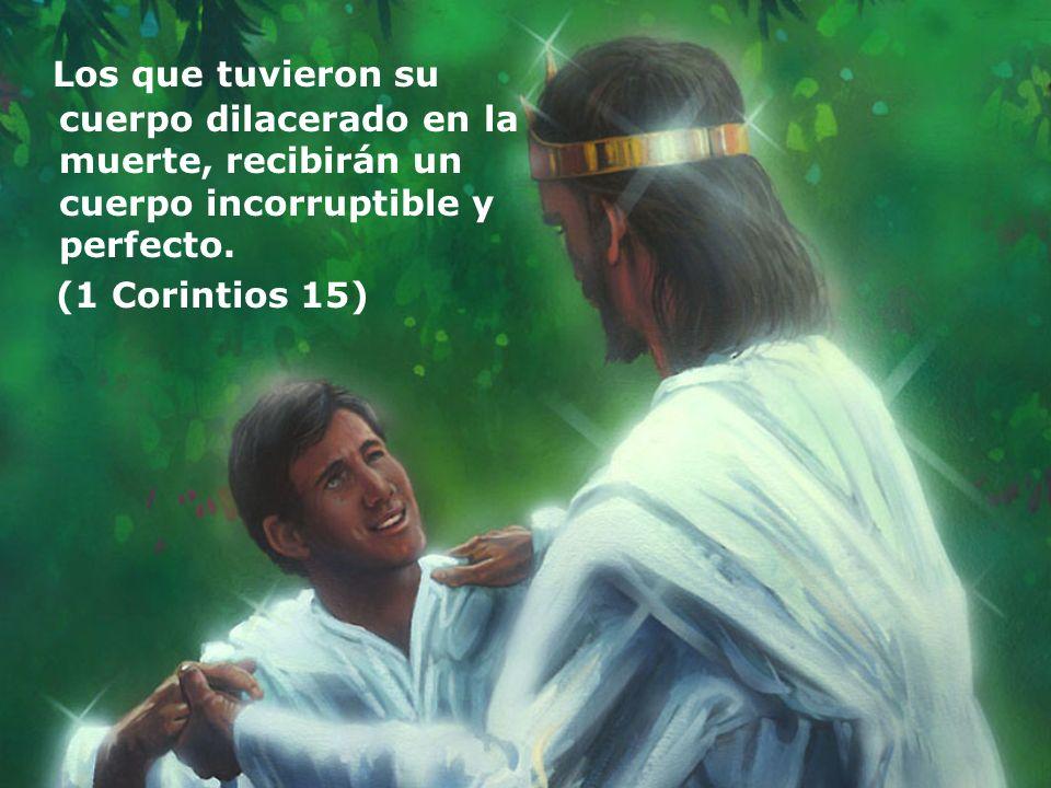 Los que tuvieron su cuerpo dilacerado en la muerte, recibirán un cuerpo incorruptible y perfecto. (1 Corintios 15)