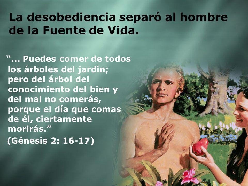 La desobediencia separó al hombre de la Fuente de Vida.... Puedes comer de todos los árboles del jardín; pero del árbol del conocimiento del bien y de