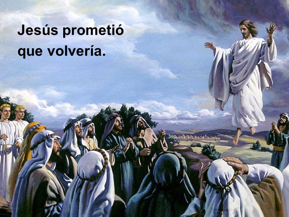 Los que aprendieron a andar con Cristo, se deleitan con la aparición de su amado Señor y Salvador.