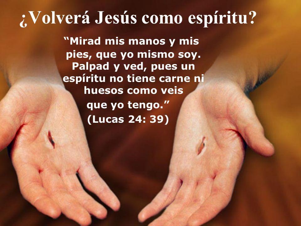 ¿Volverá Jesús como espíritu? Mirad mis manos y mis pies, que yo mismo soy. Palpad y ved, pues un espíritu no tiene carne ni huesos como veis que yo t