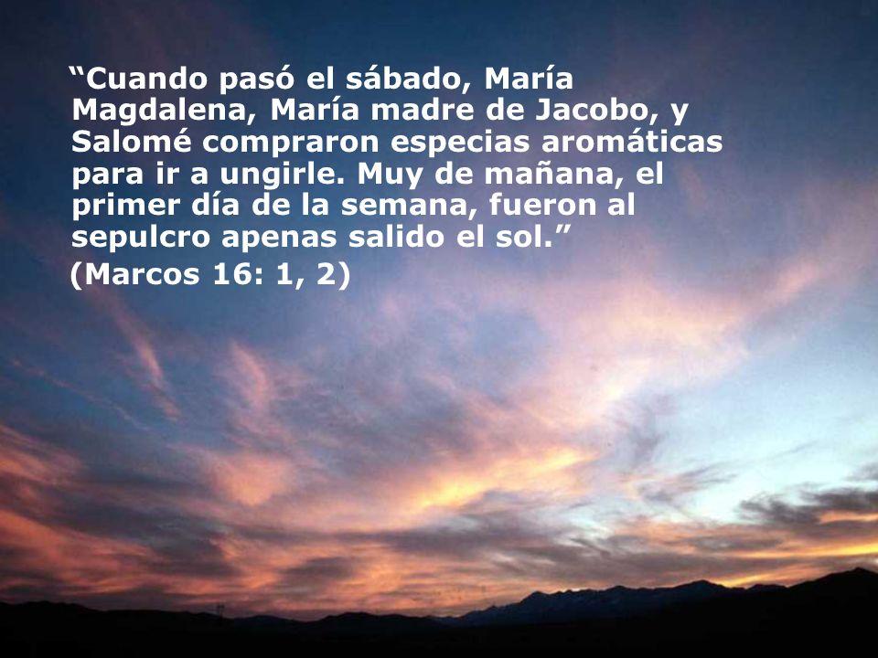 Cuando pasó el sábado, María Magdalena, María madre de Jacobo, y Salomé compraron especias aromáticas para ir a ungirle. Muy de mañana, el primer día