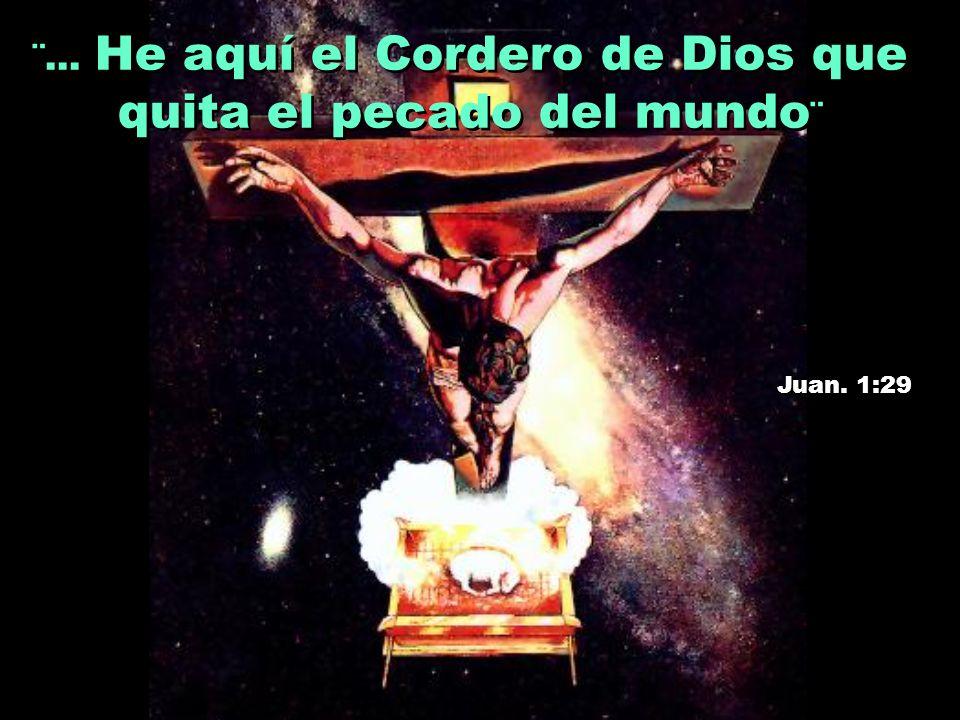 ¨...He aquí el Cordero de Dios que quita el pecado del mundo ¨ Juan.