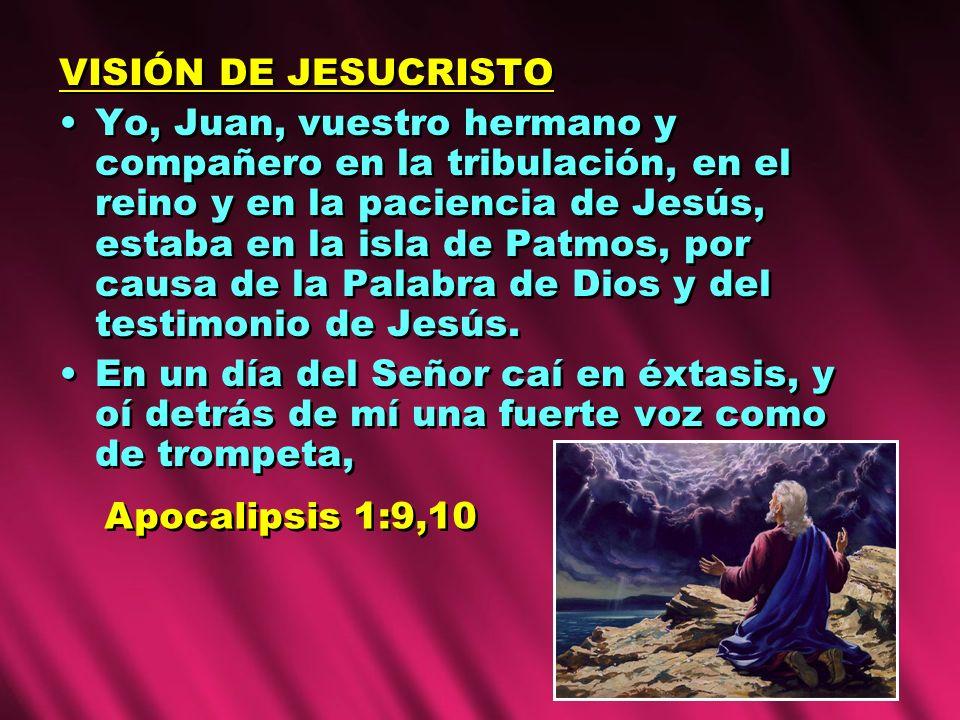 VISIÓN DE JESUCRISTO Yo, Juan, vuestro hermano y compañero en la tribulación, en el reino y en la paciencia de Jesús, estaba en la isla de Patmos, por causa de la Palabra de Dios y del testimonio de Jesús.