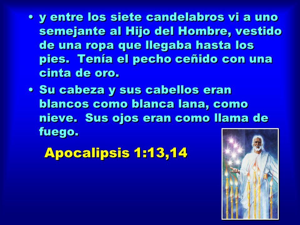 y entre los siete candelabros vi a uno semejante al Hijo del Hombre, vestido de una ropa que llegaba hasta los pies.