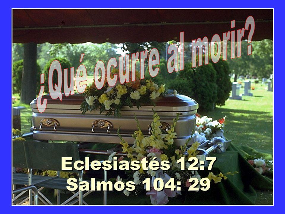 Eclesiastés 12:7 Salmos 104: 29 Eclesiastés 12:7 Salmos 104: 29