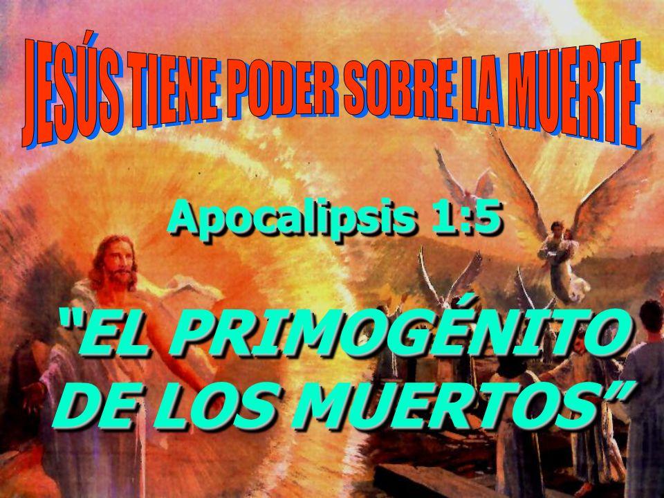 Apocalipsis 1:5 EL PRIMOGÉNITO DE LOS MUERTOS Apocalipsis 1:5 EL PRIMOGÉNITO DE LOS MUERTOS