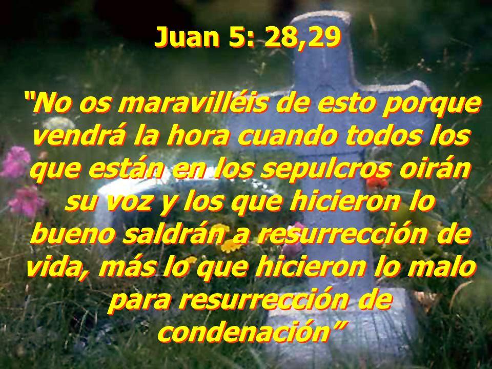 Juan 5: 28,29 No os maravilléis de esto porque vendrá la hora cuando todos los que están en los sepulcros oirán su voz y los que hicieron lo bueno sal