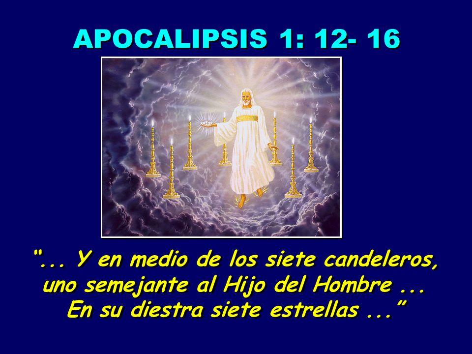 APOCALIPSIS 1: 12- 16... Y en medio de los siete candeleros, uno semejante al Hijo del Hombre... En su diestra siete estrellas...... Y en medio de los