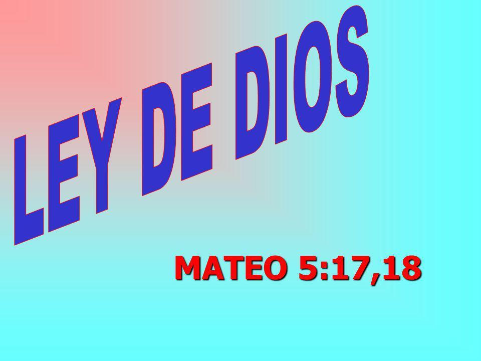MATEO 5:17,18