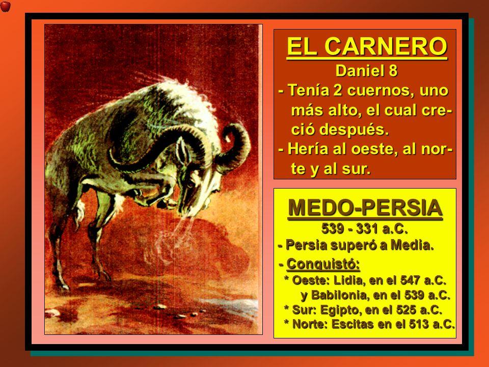 EL CARNERO Daniel 8 - Tenía 2 cuernos, uno más alto, el cual cre- más alto, el cual cre- ció después. ció después. - Hería al oeste, al nor- te y al s