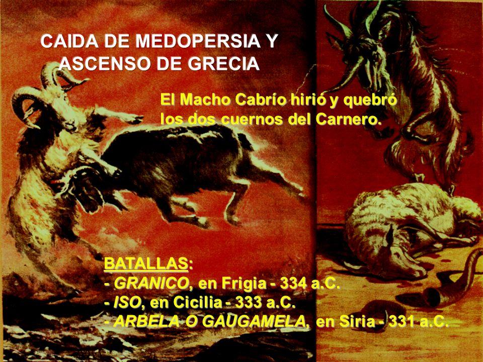 BATALLAS: - GRANICO, en Frigia - 334 a.C. - ISO, en Cicilia - 333 a.C. - ARBELA O GAUGAMELA, en Siria - 331 a.C. El Macho Cabrío hirió y quebró los do