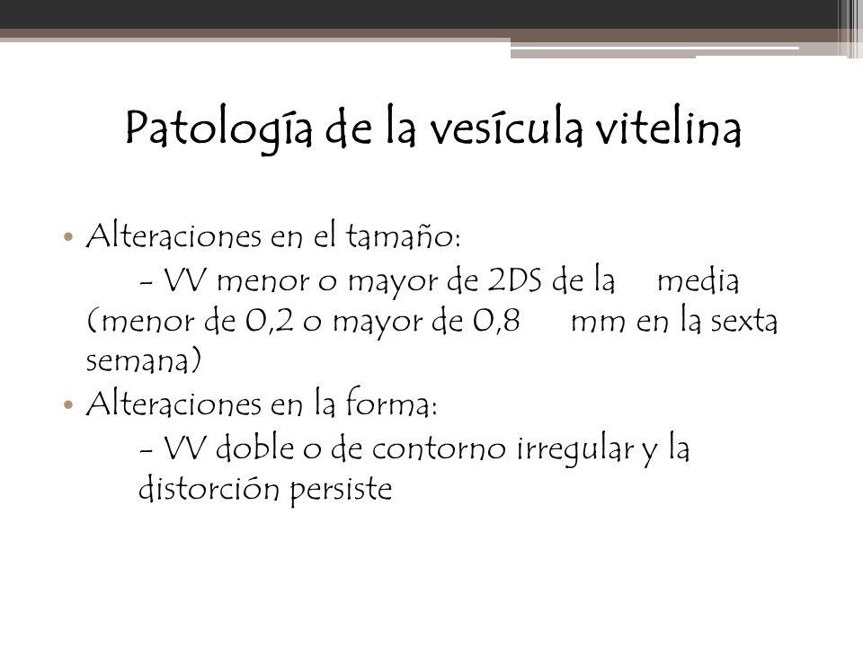 Patología de la vesícula vitelina Alteraciones en el tamaño: - VV menor o mayor de 2DS de la media (menor de 0,2 o mayor de 0,8 mm en la sexta semana)