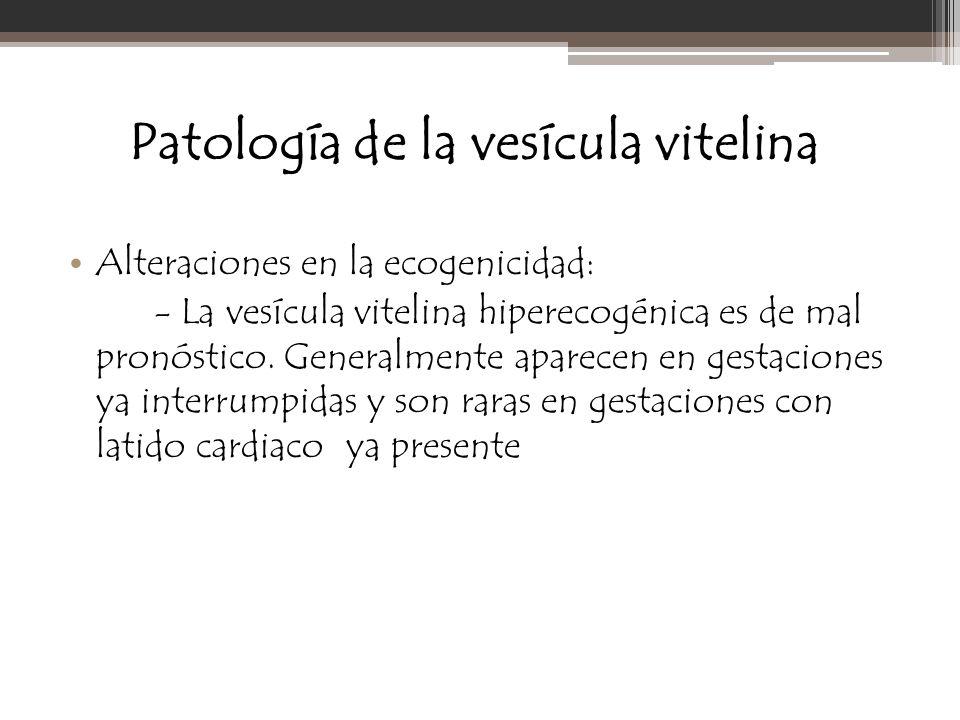 Patología de la vesícula vitelina Alteraciones en la ecogenicidad: - La vesícula vitelina hiperecogénica es de mal pronóstico. Generalmente aparecen e