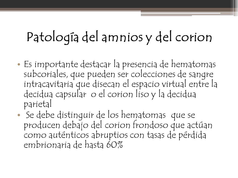 Patología del amnios y del corion Es importante destacar la presencia de hematomas subcoriales, que pueden ser colecciones de sangre intracavitaria qu