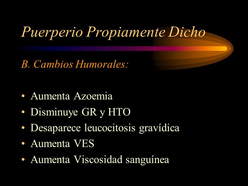 Puerperio Propiamente Dicho A. Cambios histológicos Regresan hipertrofia e hiperplasia de fibras musculares. Regeneración endometrio