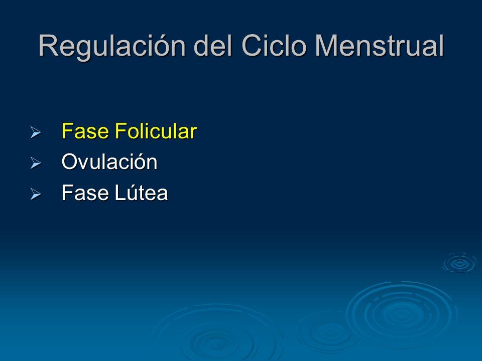 Regulación del Ciclo Menstrual Fase Folicular Duración 10-14 días Duración 10-14 días Acciones secuenciales de hormonas y péptidos autocrinos/paracrinos dirigen el crecimiento del folículo Acciones secuenciales de hormonas y péptidos autocrinos/paracrinos dirigen el crecimiento del folículo