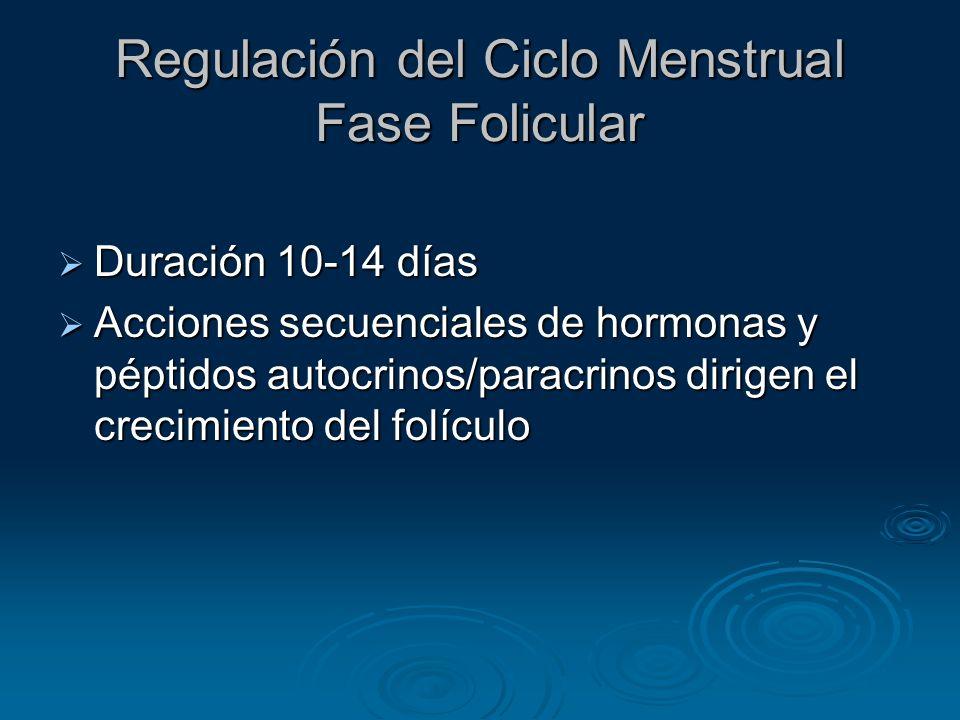 Regulación del Ciclo Menstrual Fase Folicular 1.Folículo Primordial 2.Folículo Preantral 3.Folículo Antral a- El Sistema de Dos Células b- Selección del Folículo Dominante c- El Sistema de Retroalimentación d- Inhibina, Activina, Folistatina e- Factores de Crecimiento 4.Folículo Preovulatorio