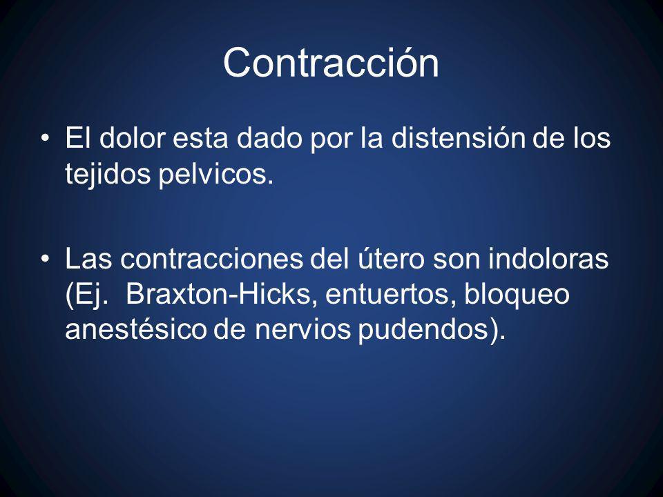 Contracción El dolor esta dado por la distensión de los tejidos pelvicos. Las contracciones del útero son indoloras (Ej. Braxton-Hicks, entuertos, blo