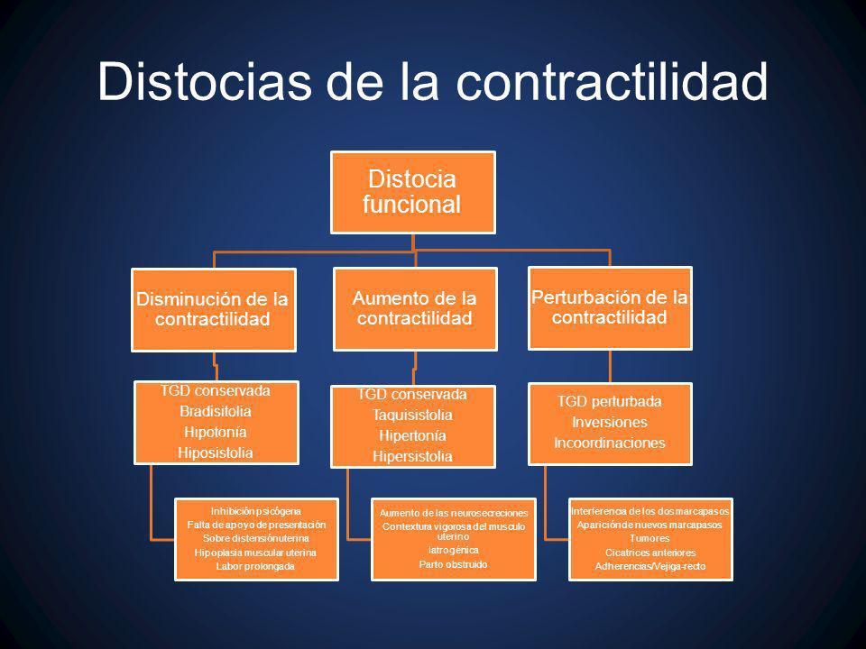 Distocias de la contractilidad Distocia funcional Disminución de la contractilidad TGD conservada Bradisitolia Hipotonía Hiposistolia Inhibición psicó