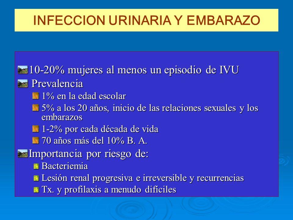 INFECCION URINARIA Y EMBARAZO 10-20% mujeres al menos un episodio de IVU Prevalencia Prevalencia 1% en la edad escolar 5% a los 20 años, inicio de las