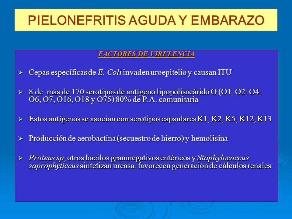 PIELONEFRITIS AGUDA Y EMBARAZO FACTORES DE VIRULENCIA Cepas específicas de E. Coli invaden uroepitelio y causan ITU Cepas específicas de E. Coli invad