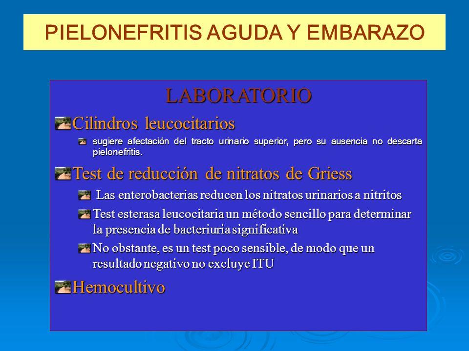 PIELONEFRITIS AGUDA Y EMBARAZO LABORATORIO Cilindros leucocitarios sugiere afectación del tracto urinario superior, pero su ausencia no descarta pielo