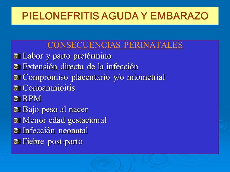 PIELONEFRITIS AGUDA Y EMBARAZO CONSECUENCIAS PERINATALES Labor y parto pretérmino Extensión directa de la infección Compromiso placentario y/o miometr