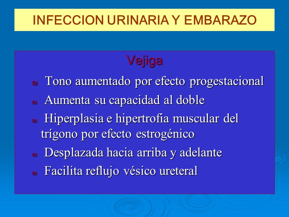INFECCION URINARIA Y EMBARAZO Vejiga Tono aumentado por efecto progestacional Tono aumentado por efecto progestacional Aumenta su capacidad al doble A
