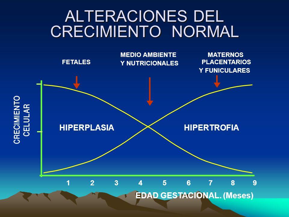 ALTERACIONES DEL CRECIMIENTO NORMAL EDAD GESTACIONAL. (Meses) 1 2 3 4 5 6 7 8 9 HIPERPLASIA HIPERTROFIA FETALES MEDIO AMBIENTE Y NUTRICIONALES PLACENT