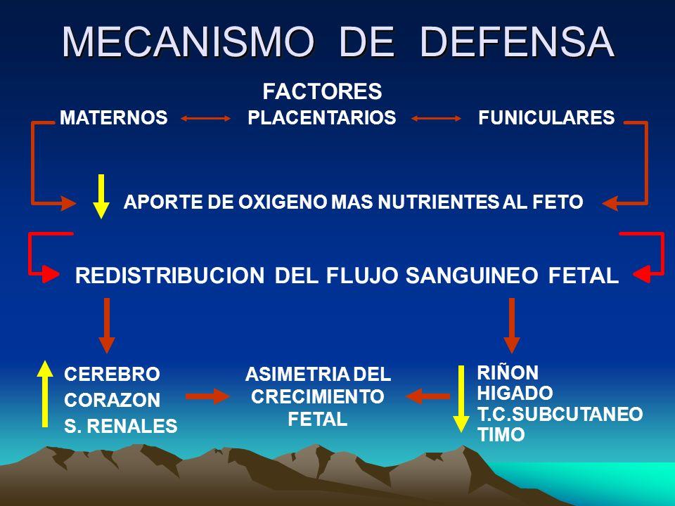 MECANISMO DE DEFENSA MATERNOSPLACENTARIOSFUNICULARES REDISTRIBUCION DEL FLUJO SANGUINEO FETAL APORTE DE OXIGENO MAS NUTRIENTES AL FETO CEREBRO CORAZON