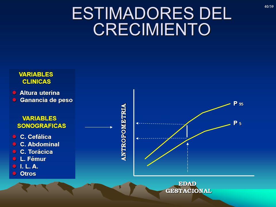 ESTIMADORES DEL CRECIMIENTO P 5 P 95 EDADGESTACIONAL ANTROPOMETRIA VARIABLES VARIABLES CLINICAS CLINICAS Altura uterina Altura uterina Ganancia de pes